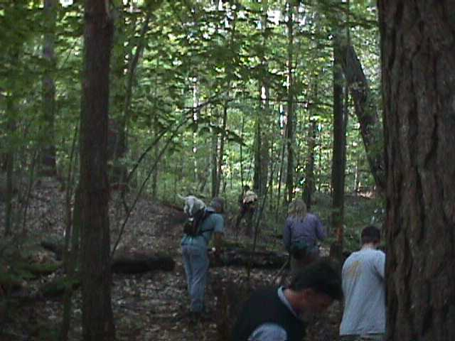 Fellowship of the Wheel Volunteers in the Saxon Hill Forest